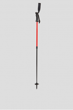 Лыжные палки Telescopic Ski Pole